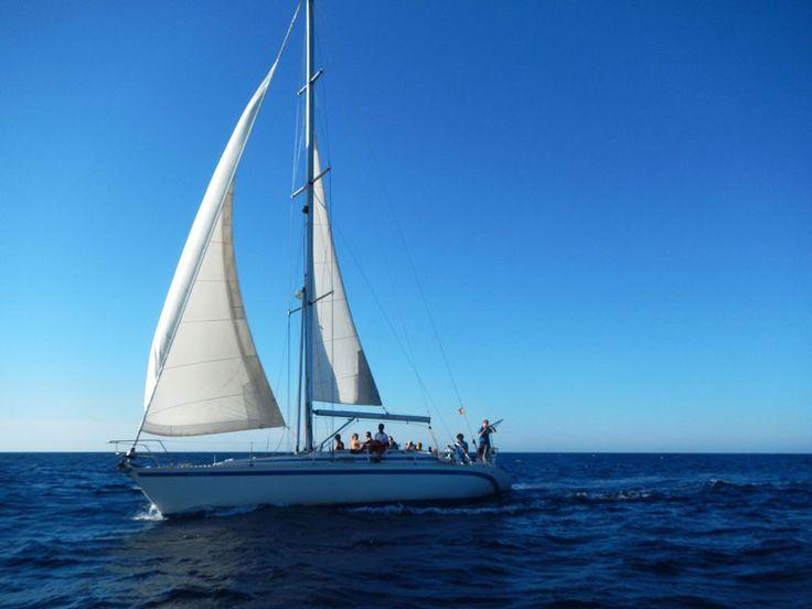 Velero, entrando en Fornells, Sailing boats, wind, sun, sea, happy.... kayakat.net