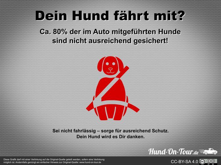 #DeinHundFährtMit Wie sichert ihr euren Hund im Auto ab? Oder lasst ihr ihn einfach so mitfahren? Bild: www.hund-on-tour.de