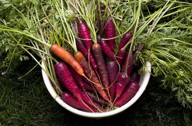Purple Carrots    Don't let the color throw you off—these purple carrots taste just the same as the orange variety and can be cooked in the same ways. Warning: The pigment can bleed a bit, so you may end up with a pink-hued salad. Worth it! (Photo: Ian van Coller/Getty Images)