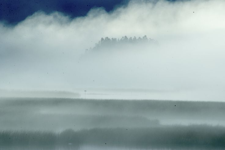 https://flic.kr/p/v5MDNC | invierno en el humedal | Punucapa, Santuario de la Naturaleza Carlos Anwandter