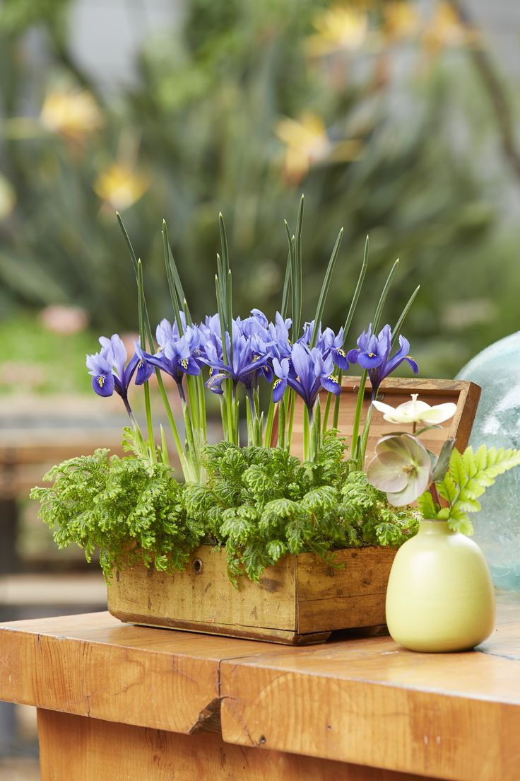 17 Best images about Easter Decorating Ideas on Pinterest ...