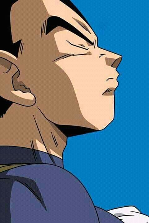 Dragon Ball Z Anime Characters : Best images about dbz on pinterest