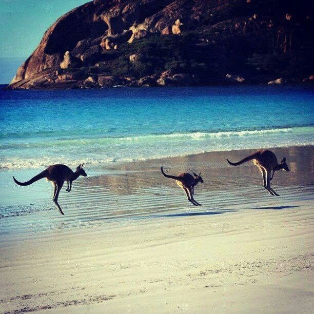 Australia...one place i would love to experience