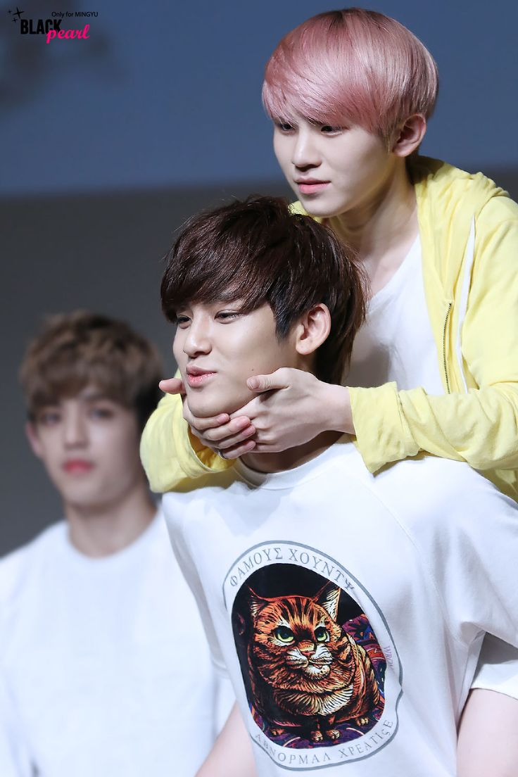 Seventeen Mingyu and Woozi (c) Black Pearl || Do not edit/crop photo!
