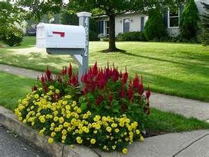 Świetny pomysł na zagospodarowanie skrzynki na listy.  Projektowanie i pielęgnacja ogrodów: www.transgaj.pl  flowers by mailbox.....I want to do this....