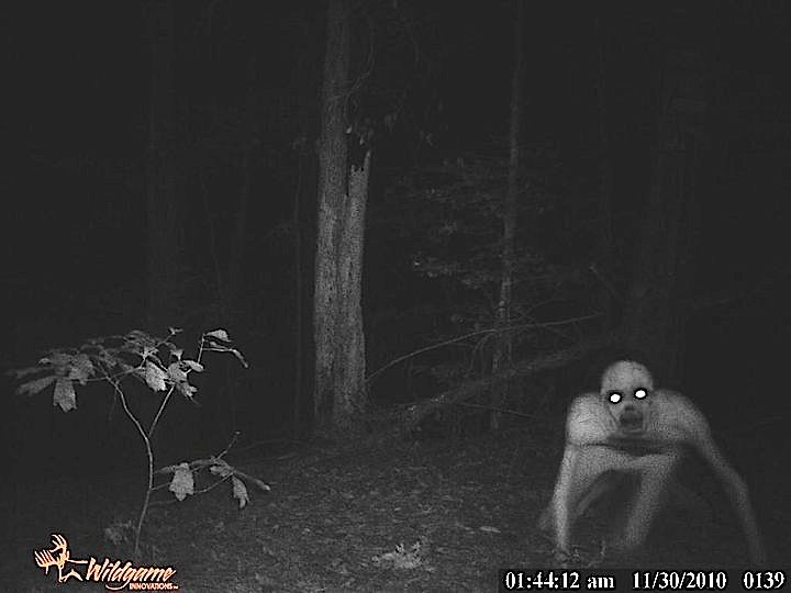 During the summer of 2003, events in the northeastern United States involving a strange, human-like creature sparked brief local media interest before an apparent blackout was enacted. Little or no information was left intact, as most online and written accounts of the creature were mysteriously destroyed. Primarily focused in rural New York state and once found in Idaho, self proclaimed witnesses told stories of their encounters with a creature of unknown origin. Emotions ranged from…