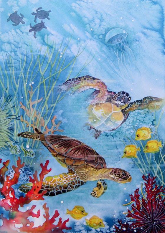 February 2016 Challenge Winner - Turtles by member Gill Farhquharson - Beautiful image and fantastic colours in this winning piece.