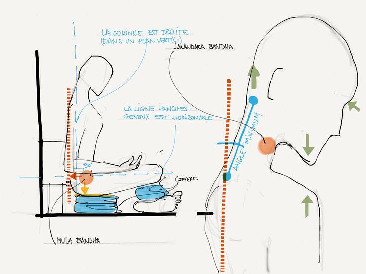 Jalandara Bandha - pranayama assis | Iyengar Yoga TT Notes