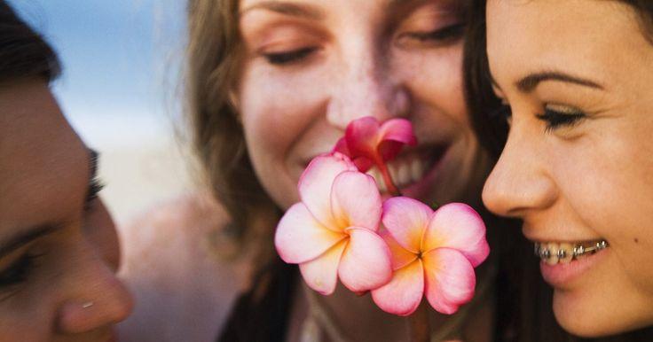 Plantas y flores en las Filipinas. Filipinas mantiene una gran cantidad de plantas y flores tropicales. Las plantas y las flores de las Filipinas se han utilizado en perfumes, tés y remedios a base de hierbas de todo el mundo. Varían en tamaño, color y fragancia, y a menudo se pueden ver en las calles, vendidas en forma de guirnalda.