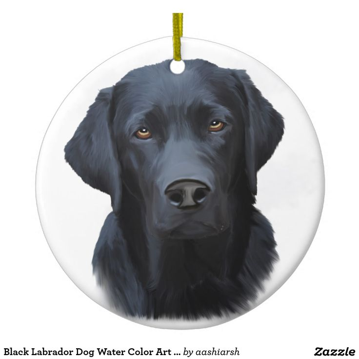 Black Labrador Dog Water Color Art Painting Ceramic Ornament