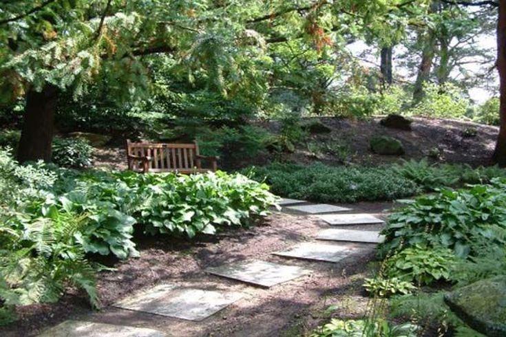 Best 25 cheap landscaping ideas ideas on pinterest diy Cheap pool landscaping ideas