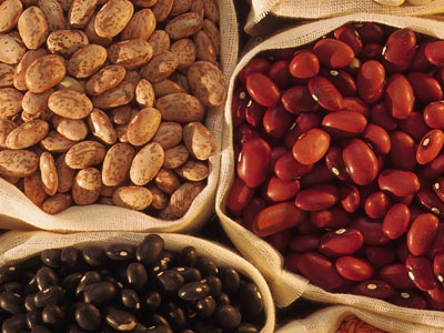 Eating on the run: Plant proteins