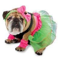 zelda-80s-party-halloween-dog-costume-1.jpg