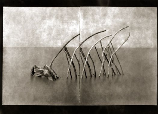 Robert Mann Gallery - Laurent Millet