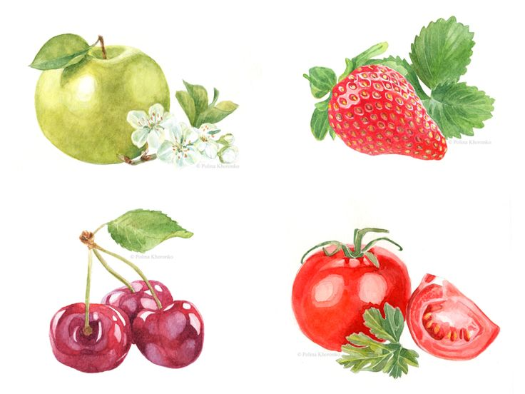 Watercolor food illustrations of fruits, berries, vegetables by Polina Khoronko