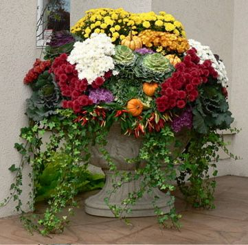 stunning outdoor fall planter....I use a lot of decorative cabbages in my fall beds.