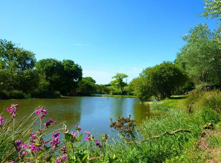 Meadow Lakes Holiday Park, St Austell, Cornwall, England. If you are looking for fishing holidays in Cornwall, your search can stop now! Meadow Lakes has 4 stunning fishing lakes ready and waiting for you to use.