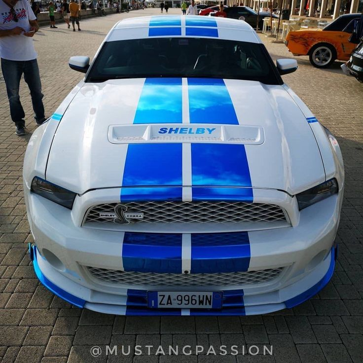 All About Mustangs on Instagram: | Shelby gt500, Mustang ...