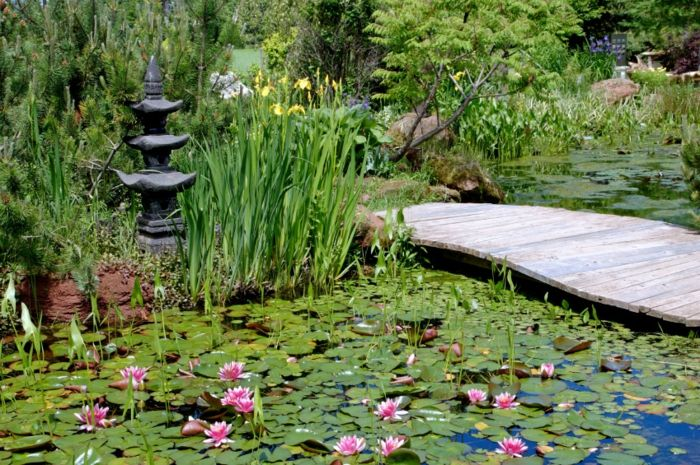 17 best ideas about outdoor ponds on pinterest backyard for Jardin zen japonais