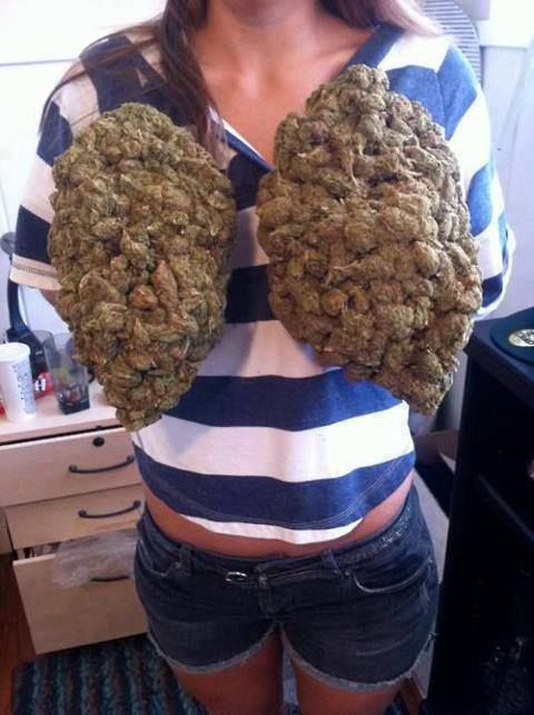 Hello we are dealers of Medical Marijuana was wondering if you are interested in any of our strains we grow and sell top quality medical grade hybrid, sativa and indicates strains, indoor and 100% organic. I Supply To Both Patients And Stoners. my strains help for treatment of terminal cancer, dibs, pain, depression, anxiety, and many other conditionsText / call +1 (908)485-7293 website: https: // www.legalcannabisshop.com