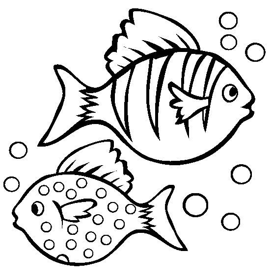 free fish coloring pages for kids disney coloring pages brneklub pinterest fish fish template and free
