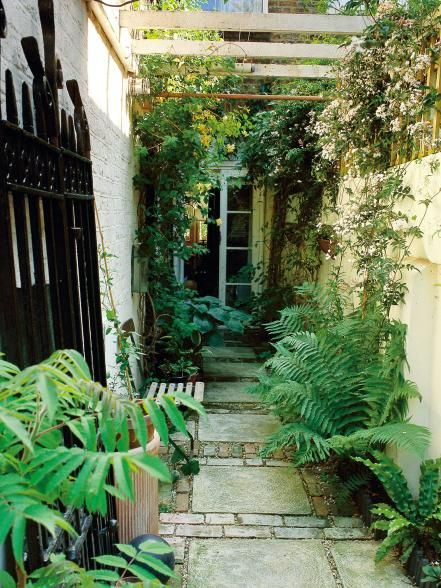 Troubleshooting ideas for a problematic narrow garden space.