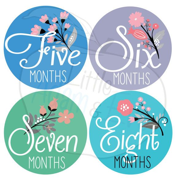 baby month stickers girl baby month stickers by LittleAdamandEve