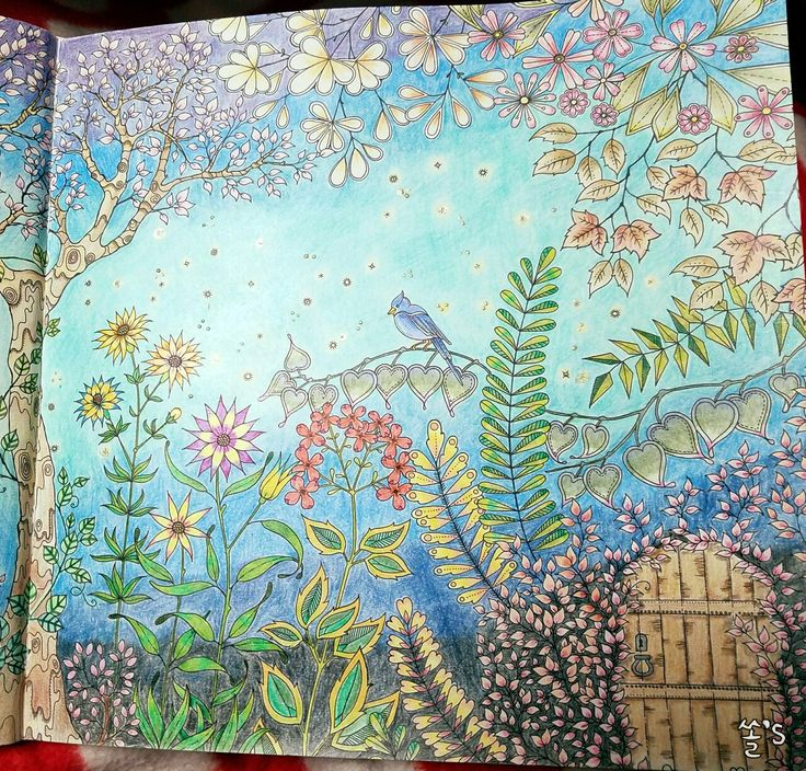 8 best coloring book images on Pinterest  Coloring books Secret
