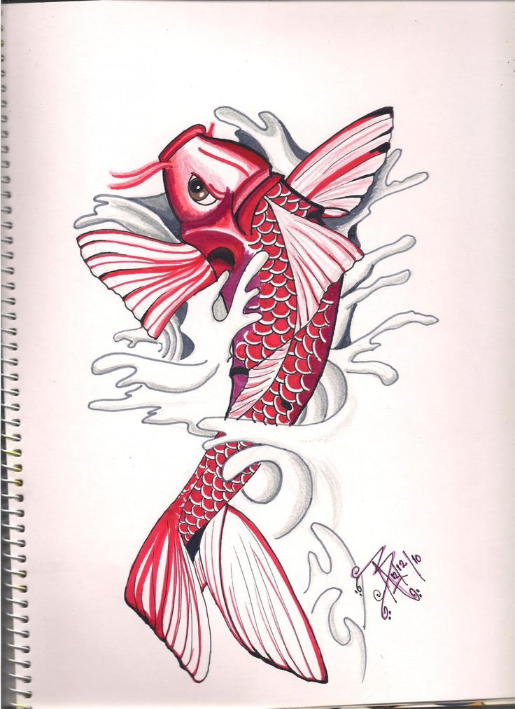 The 25 best Pez koi dibujo ideas on Pinterest  Dibujo de peces