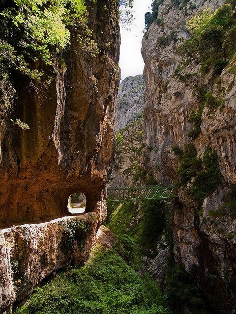 Hiking Trail, Rio Cares, Asturias, Spain