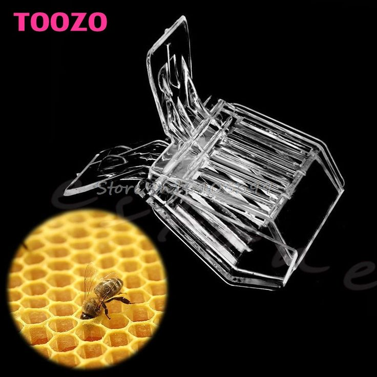 TOOZO - Plastic Alligator Mouth Queen Cage Clip - Bee Catcher