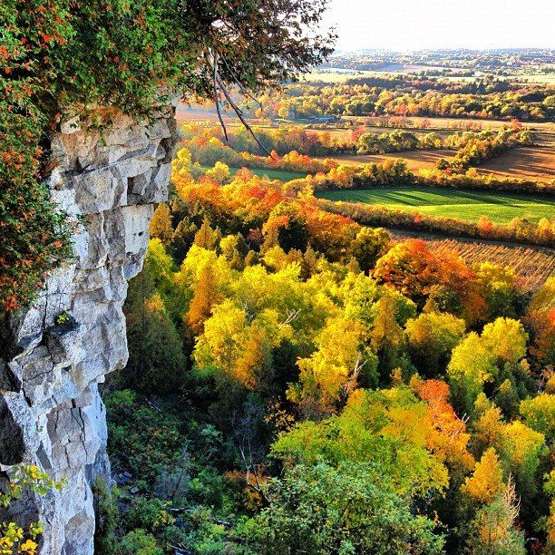 Stretching out as far as the eye could see was a carpet of green and gold...    Mount Nemo lookout - Burlington, Ontario