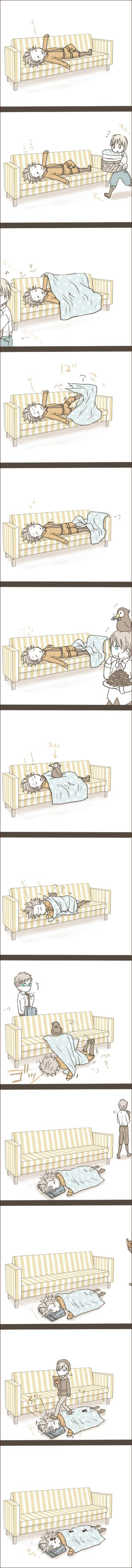 Arne (head-canon name for Denmark) is taking the nap. How do the other Nordics react when they pass him? - Art by Stippie
