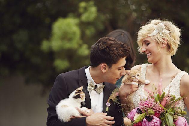 Matrimonio col gatto: quando le nozze si fanno graffianti