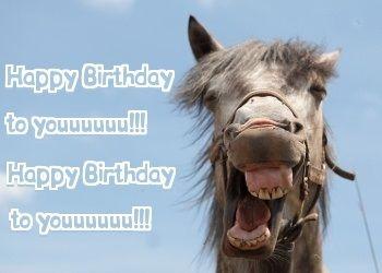 verjaardagskaart paard Happy Birthday to youuuuu! | Horse Birthday Quotes | Pinterest  verjaardagskaart paard