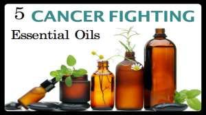 5 Herbal Essential Oils That Are Proven to Kill Cancer Cells