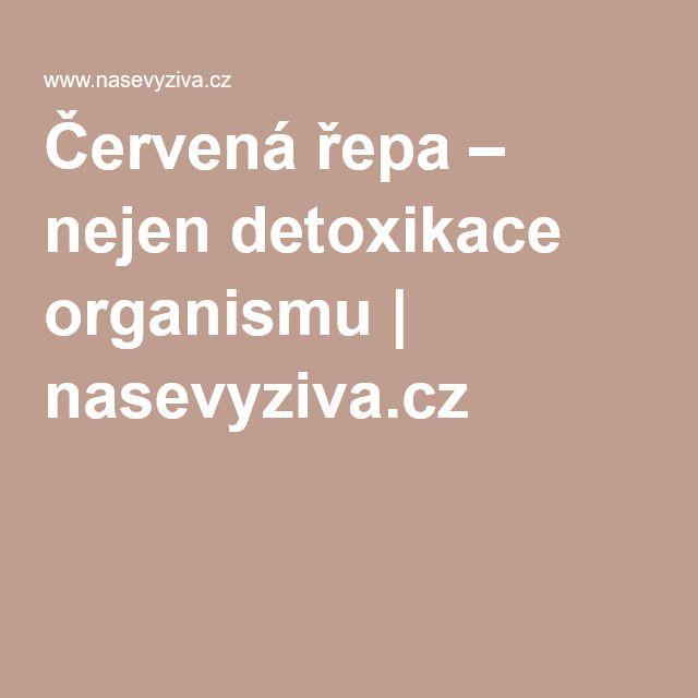 Červená řepa – nejen detoxikace organismu | nasevyziva.cz