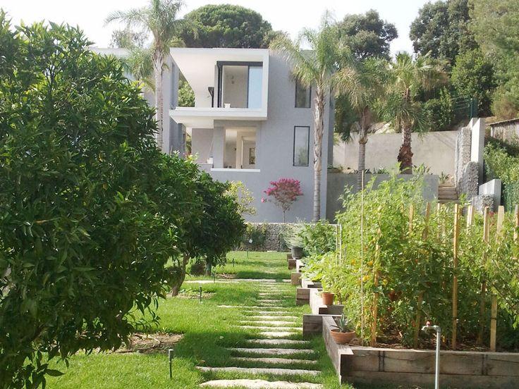 Cannes jardin paysager avec villa contemporaine. D'après les plans de l'architecte Jean-Jacques Lécuru, nous avons réalisé le jardin paysager de cette villa contemporaine. Nous avons préparé le sol, fait la mise en place, construit les structures et aménagé les plantations. Nous avons assisté le grutage des gros sujets tels que les oliviers et les palmiers.