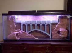 My (OC) DIY 3D aquarium background - Album on Imgur