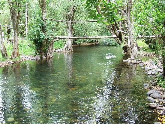 Concepcion, Chile: temuco rios de chile