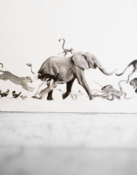 Beware The Moon Wallpaper - Animal Border by Beware the Moon | JUST KIDS WALLPAPER™