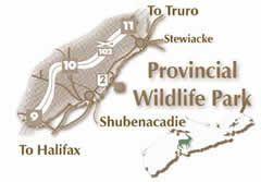 Shubenacadie Provincial Wildlife Park Nova Scotia