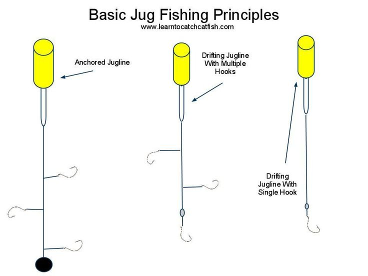 jug fishing for catfish - Google Search