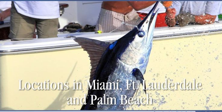 9 best miami fishing charter boat images on pinterest for Miami fishing supply