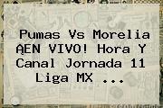 http://tecnoautos.com/wp-content/uploads/imagenes/tendencias/thumbs/pumas-vs-morelia-en-vivo-hora-y-canal-jornada-11-liga-mx.jpg Pumas vs Morelia. Pumas vs Morelia ¡EN VIVO! Hora y Canal Jornada 11 Liga MX ..., Enlaces, Imágenes, Videos y Tweets - http://tecnoautos.com/actualidad/pumas-vs-morelia-pumas-vs-morelia-en-vivo-hora-y-canal-jornada-11-liga-mx/