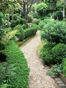 Garden path...The Garden Aesthetic. love the gravel stone curving garden path and all the beautiful green plantings