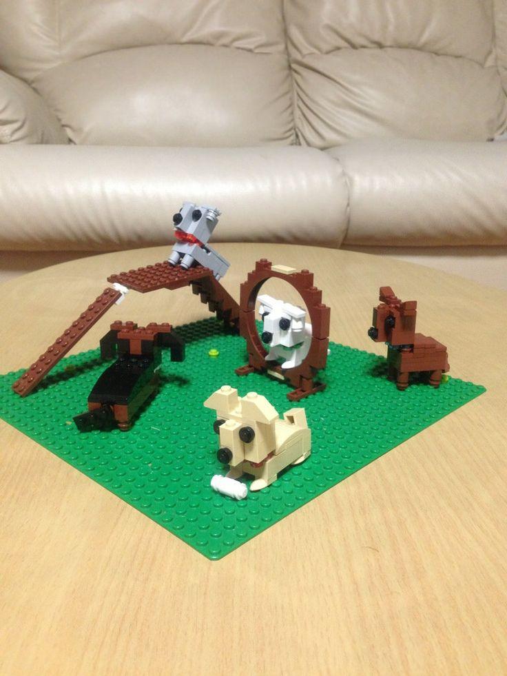 LEGO DOG RUN