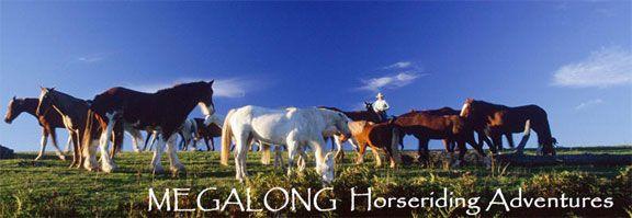 Horse Riding Getaway Wilderness Estate, Blue Mountains