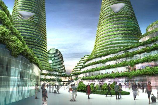 Une foret en ville - Ville du futur à Gwanggyo - L'Internaute Savoir