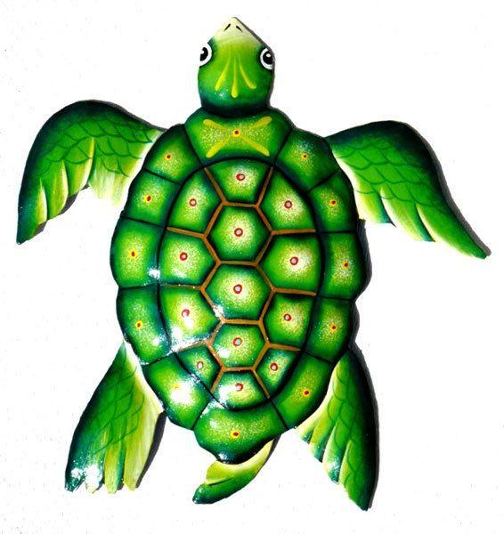 The Gecko Shack - XLarge Green Beach Turtle 45cm, $55.00 (http://www.geckoshack.com.au/xlarge-green-beach-turtle-45cm/)